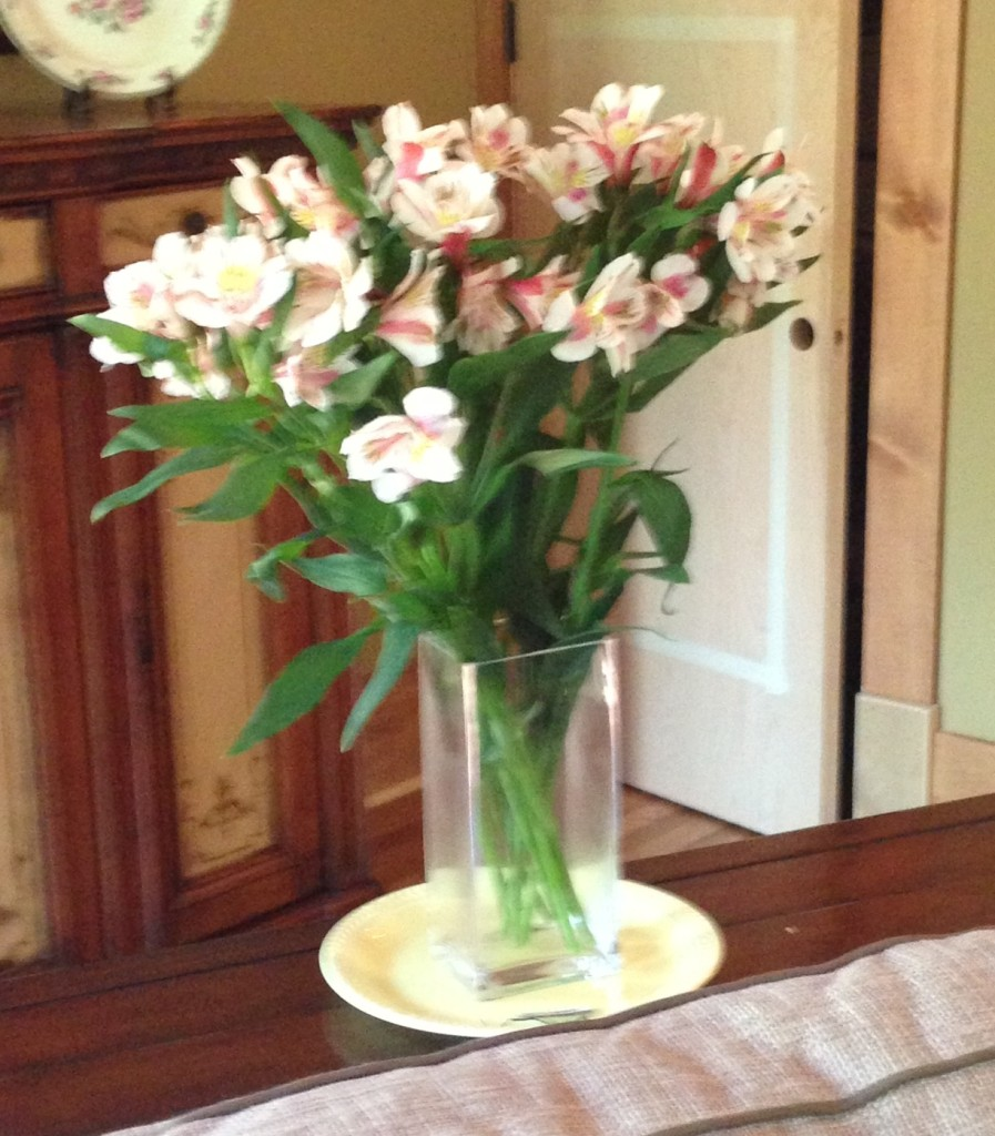 Housewarming flowers from the Teals